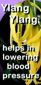 Ormus Minerals Ylang Ylang Healing Ormus Oil - Ylang Ylang helps with blood pressure