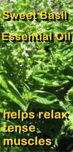Ormus Minerals Sweet Basil Healing Ormus Oil helps tense muscles